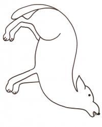 coloriage d'un loup