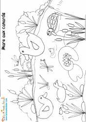 Coloriage de la mare aux canards