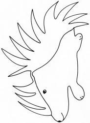 coloriage d'un porc-épic dessin 2