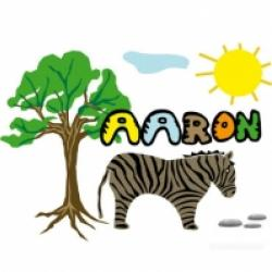 Activités sur le prénom Aaron