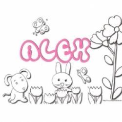 Activités sur le prénom Alex
