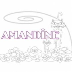 Activités sur le prénom Amandine