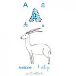 Apprendre et lire le A comme antilope