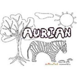 Aurian, coloriages Aurian