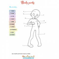 Activité pour apprendre l'anglais aux enfants