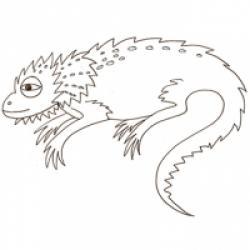 Coloriages des lézards et les caméléons