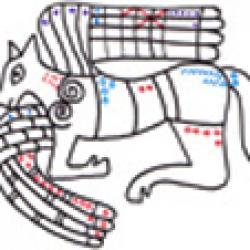 Imprimer l'exercice de graphisme celtique 3 : Boeuf