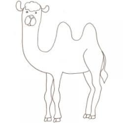 chameau à colorier