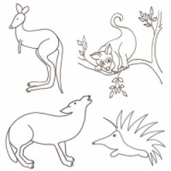 Coloriages des animaux d'Australie