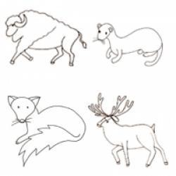 Coloriages des animaux forêt et campagne