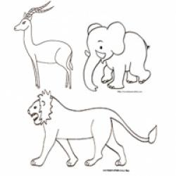 Coloriage animaux de la savane
