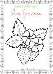 Un coloriage à imprimer sur le printemps. Sur ce coloriage le dessin de deux fraises et de fleurs de fraisier est entouré d'une petite frise sur le thème du printemps.