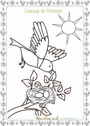 C'est le printemps et au printemps l'oiseau fait son nid ! Voici le coloriage d'un oiseau entretenant son nid au printemps. Cet oiseau a déjà pondu ses oeufs dans le nid !