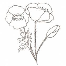 Coloriages sur les fleurs