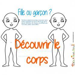 Corps humain : activités sur le corps et les organes