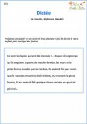 Le rossignol : dictée CE1