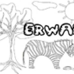 Activités sur le prénom Erwan