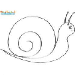 Dessin de l'escargot pour mosaïque