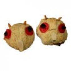 Cookies hibou