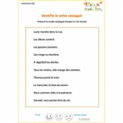 Exercice1 de grammaire CE2