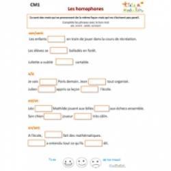 Exercice 1 de grammaire CM1