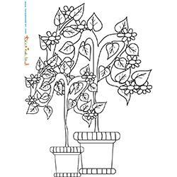 Arbuste de jardin en pot à colorier