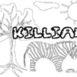 Activités sur le prénom Killian