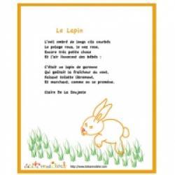 Poésie Le lapin