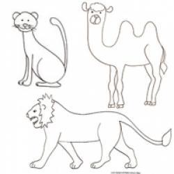 Coloriage mammifères