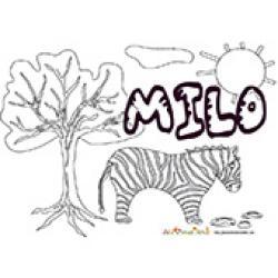 Milo, coloriages Milo
