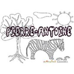 Pierre Antoine, coloriages Pierre Antoine