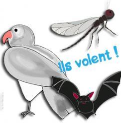 Jeu Pigeon vole