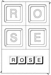 rose keystone