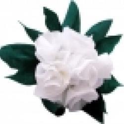 Fabriquer un gros bouquet de roses blanches