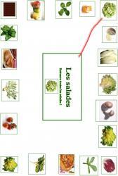 Faire une activité pour différencier les salade des autres aliments