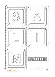 salim keystone