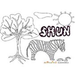 Shun, coloriages Shun