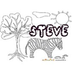 Steve, coloriages Steve