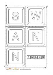 swann keystone