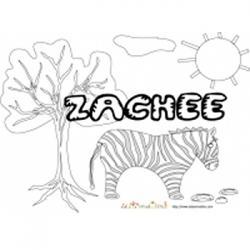 Zachée