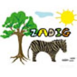 Activités sur le prénom Zadig