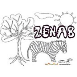 Zenab, coloriages Zenab