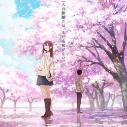 Sakura est une lycéenne populaire et pleine de vie. Tout l'opposé d'un de ses camarades solitaires qui, tombant par mégarde sur son journal intime, découvre qu'elle n'a plus que quelques mois à vivre... Unis par ce secret, ils se rapprochent et s'apprivoi
