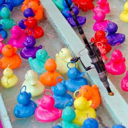 Voici un jeu très amusant à mettre en place : le jeu de la pêche à la sardine. Un jeu idéal pour une kermesseou un anniversaire. Ce jeu joue avec un bassin d'eau avec des canards en plastique. But du jeu, en pêcher un maximum !