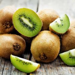 kiwi - mot du glossaire Tête à modeler. Définition et activités associées au mot kiwi.