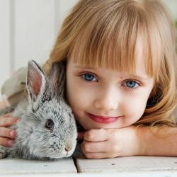 Carte d'identitÈ du lapin nain, animal de compagnie des enfants. Fiche du lapin