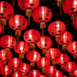 Le calcul de la date du nouvel an chinois est calculée selon le calendrier lunaire. Le calcul est complexe et varie chaque année, voici les prochaines dates du nouvel an chinois :