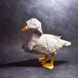 L'origami est une activité très appréciée des enfants. Mais savez-vous d'où vient cet art ? Découvrez comment s'est développé et répandu à travers le monde cette discipline. Retrouvez sur cette page, tout sur les origines de l'origami, un art vieux de plu