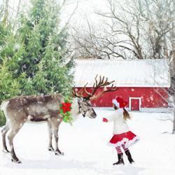 Un article pour connaître les noms des rennes du Père Noël