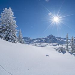 neige - mot du glossaire Tête à modeler. Définition et activités associées au mot neige.